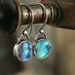 Paua Drop Earrings in Sterling Silver