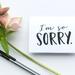 Sympathy Greeting Card & Envelope - Im So Sorry