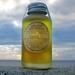 Forest Spice Beard Oil