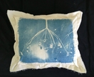 Cyanotype Photographic Feature Cushion