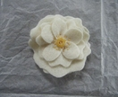 Cream felt camellia brooch/hair tie
