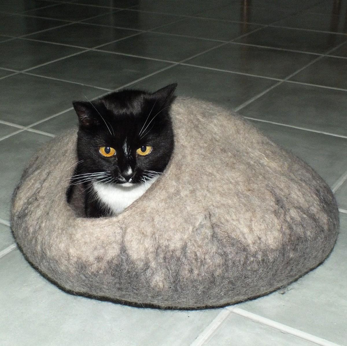 cat in the hat sticker