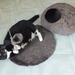 Made to Order Cat Cave and Matching Mat Natural wool cocoon Small felted natural New Zealand wool by FeltSoapGood