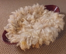 Curly Rug made of your sheep wool Newborn Photo Prop