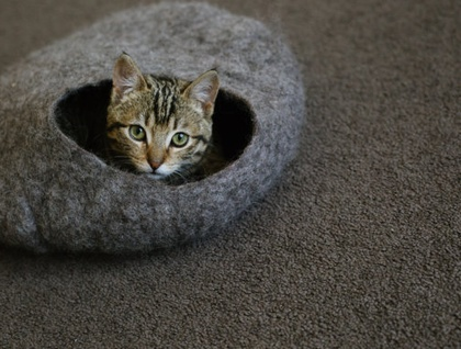 Cat Cave Pure Wool from South Island New Zealand Natural gray