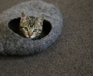 Cat Cave in Natural or Bright colours Small size by FeltSoapGood