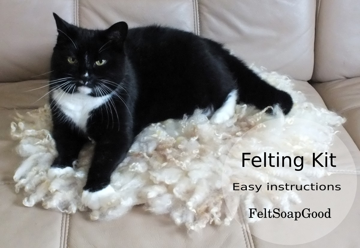 Kit For Making Needle Felted Curly Cat Mat Or Chair Pad