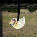 Robin Wall Hanging (small)