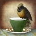 Fine Art Print - Fantails On Cups