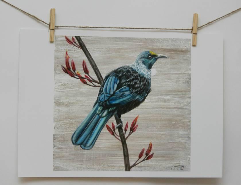 New Zealand Tui Bird