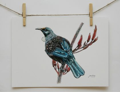 New Zealand Tui Bird A4 Print
