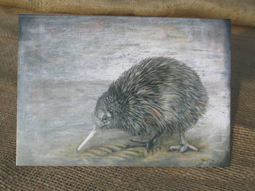 New Zealand Kiwi Bird Gift Card