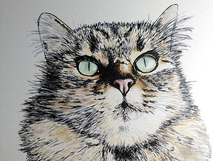 Water colour and Ink, Pet Portraits by artist Jodie McLay