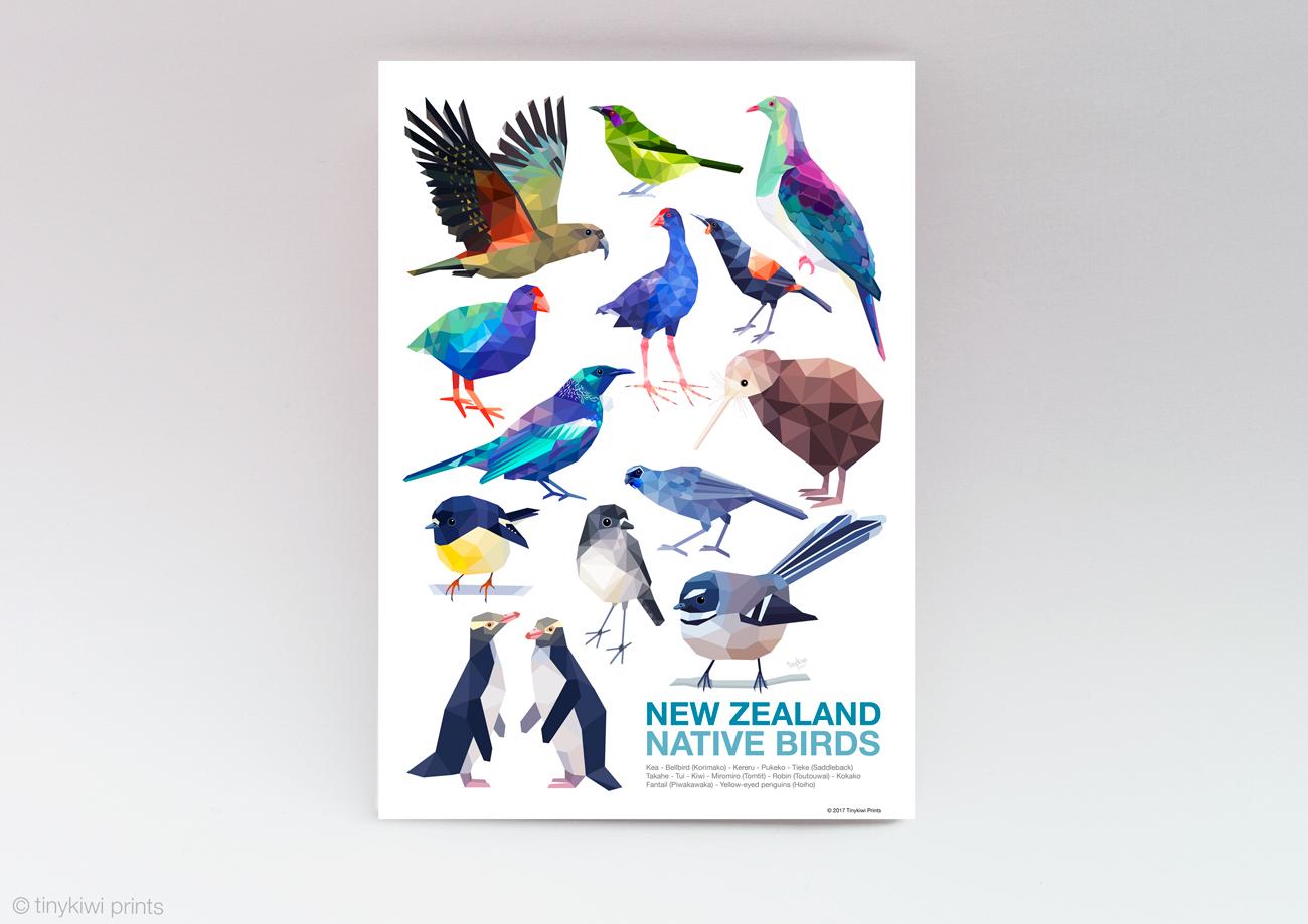 A2 New Zealand birds poster, Bird poster, Geometric birds ...