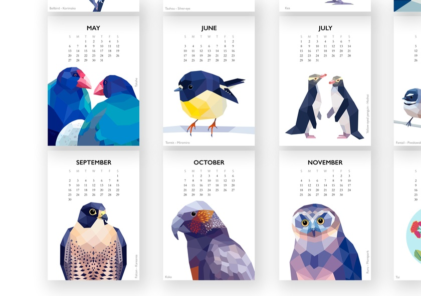 2018 wall calendar new zealand birds calendar bird calendar geometric calendar flora