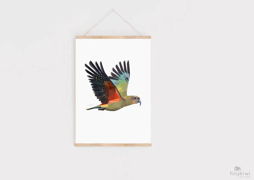 New Zealand Kea Art Print
