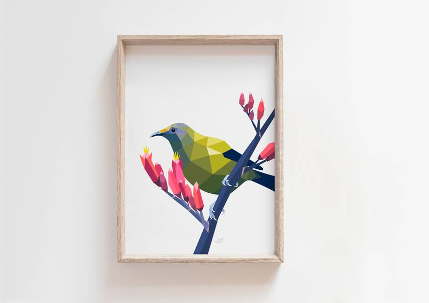 New Zealand Bellbird / Korimako Art Print
