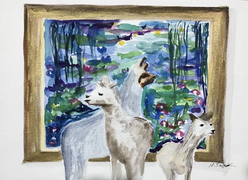 Lamas at museum visit