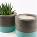 Mint concrete candle - French pear