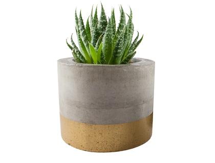 Gold concrete planter pot