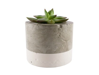 White concrete planter pot