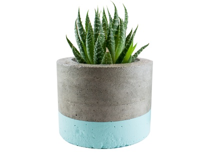 Mint concrete planter pot