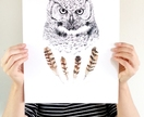 Wise Owl print A3 - Contemporary art print of pencil and watercolor drawing