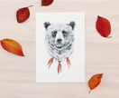 Bear print A5 - Contemporary bear art print of pencil and watercolor drawing