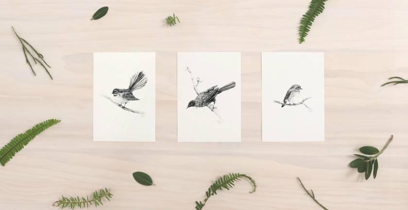 Piwakawaka (Fantail) print A4 - Contemporary illustration of a pencil drawing