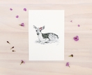 Baby Deer print A5 - Contemporary art print of pencil and watercolor drawing