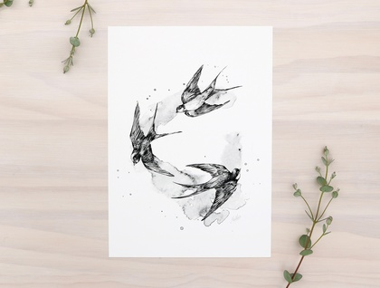 Black Swallows bird print A4 - Contemporary art print of pencil and watercolour drawing
