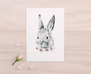 Bunny print A5 - Contemporary art print of pencil and watercolor drawing