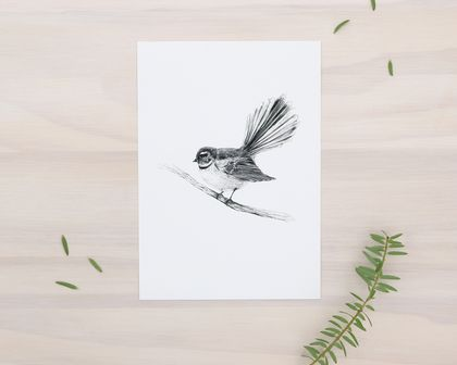 Piwakawaka (Fantail) print A5 - Contemporary illustration of a pencil drawing
