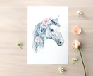 Wild Pony print A4 - Contemporary art print of pencil and watercolor drawing