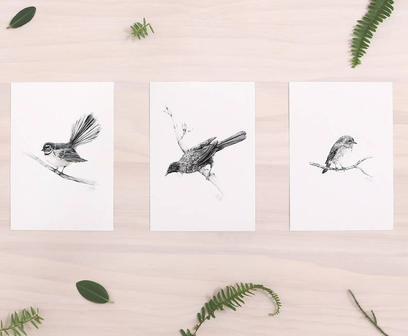 NZ Bird prints x 3, Tui, Fantail, NZRobin, A5 - Contemporary art print of a pencil drawing