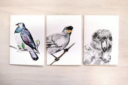 NZ Native Bird Greeting Cards - Featuring Ink and watercolour drawings of Kereru, Kokako, and Kakapo