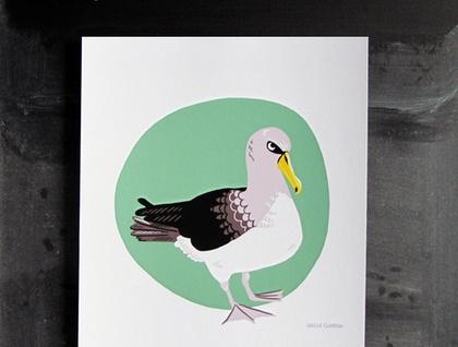 Chatham Island Mollymawk Print