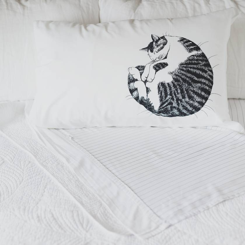 Cat Nap pillow case