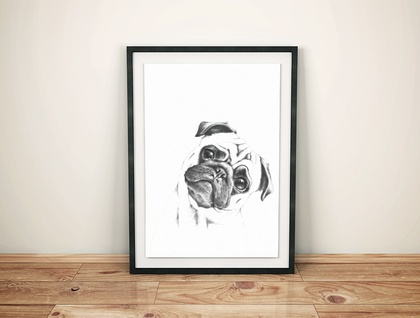 Pug in Pencil Print A4 size