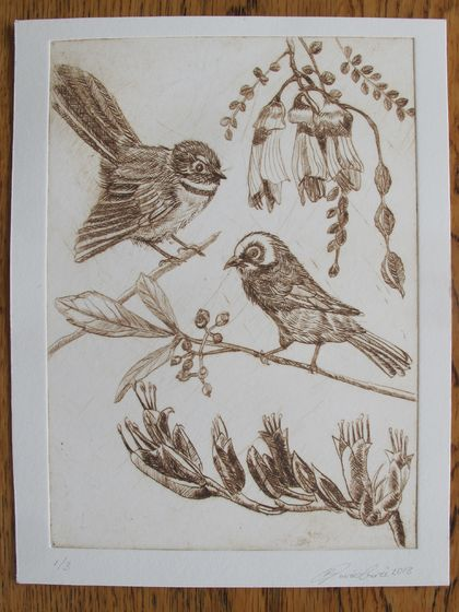 Drypoint - Native Flora and Fauna in Sepia