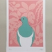 Kereru Colour A4 Fine Art Print