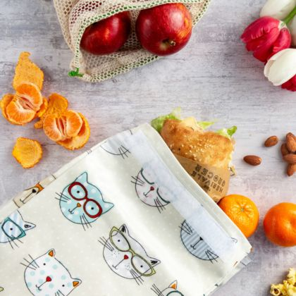 Reusable Oil Cloth Lunch Bag - Crazy Cats