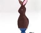 Bunny Egg Cosie