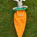 Carrot Backpack carry  -velveteen Rabbits