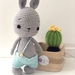 100% Cotton Crochet Bunny with removable outfits