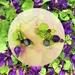 Earrings: Sweet Violet (Floral Bouquet range)