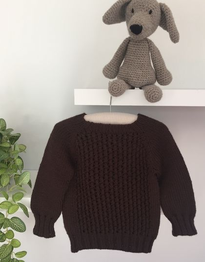 Teddy Jumper