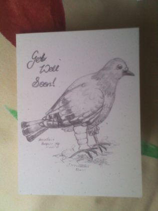 """Get Well"" Pigeon Sketch Card"
