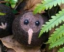 Felted wool decoration - kiwi