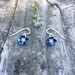 Forget me not flower earrings, individually enamelled sterling silver flower earrings